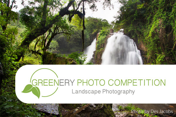 Greenery [Landscape] Photo Competition